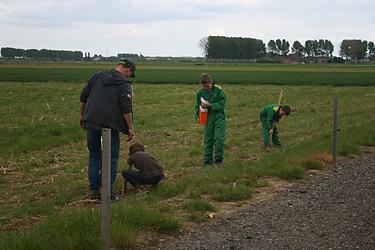 Farmcamps, logeren en helpen bij de boer