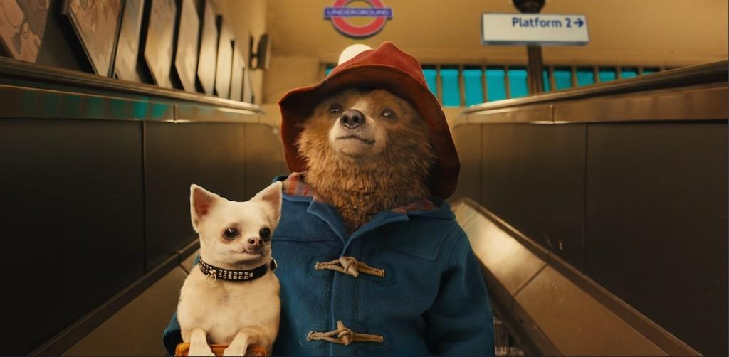 Beerte Paddington met hond