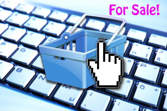 webshop te koop