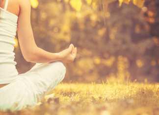 mindfulness festival