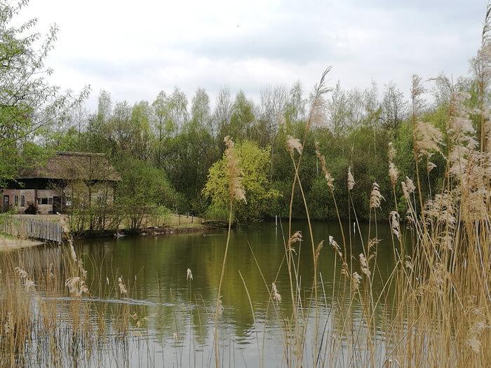 vakantiepark dierenbos vinkel visvijver