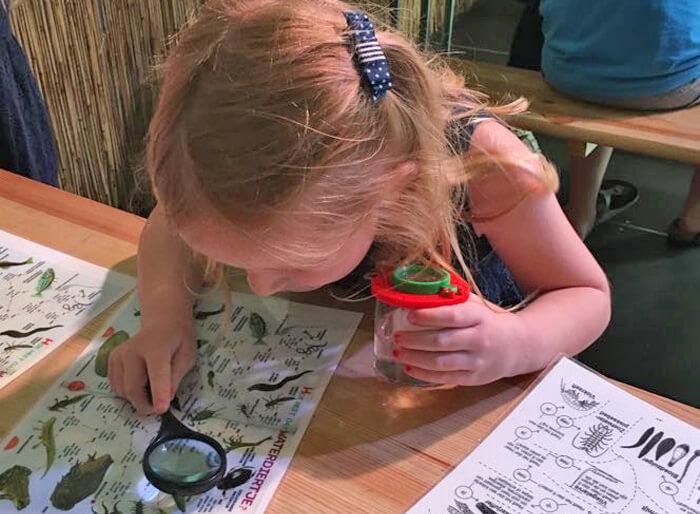 naturalis zomerexpeditie, op onderzoek
