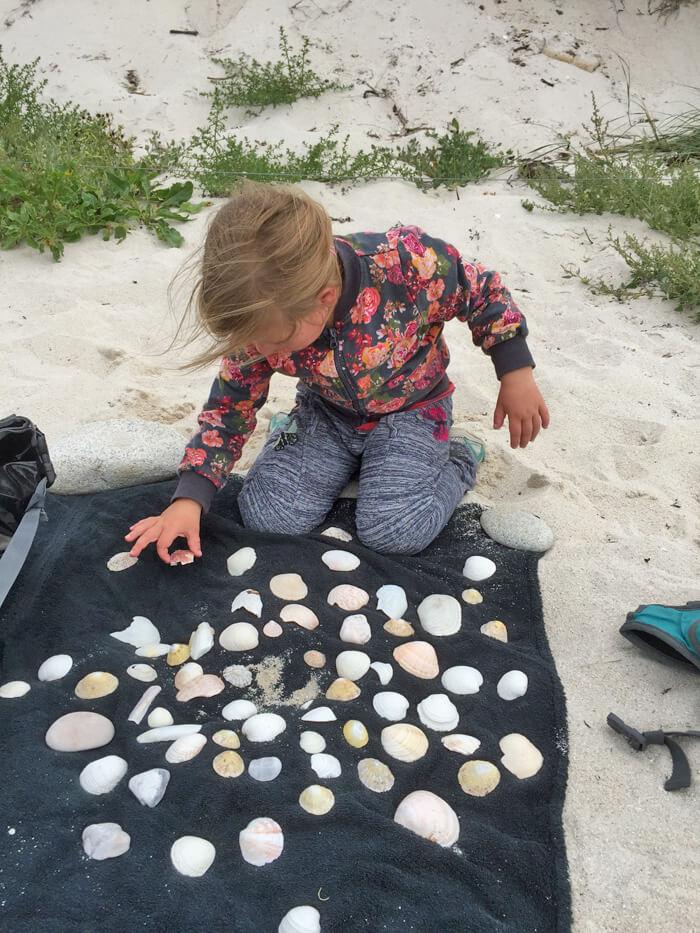 schelpen verzamelen, bretagne frankrijk