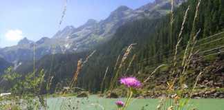 kindervakantie oostenrijk met bergen