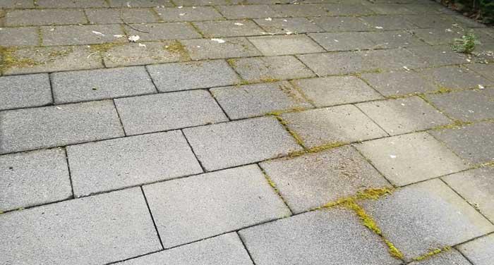 groene aanslag verwijderen terras