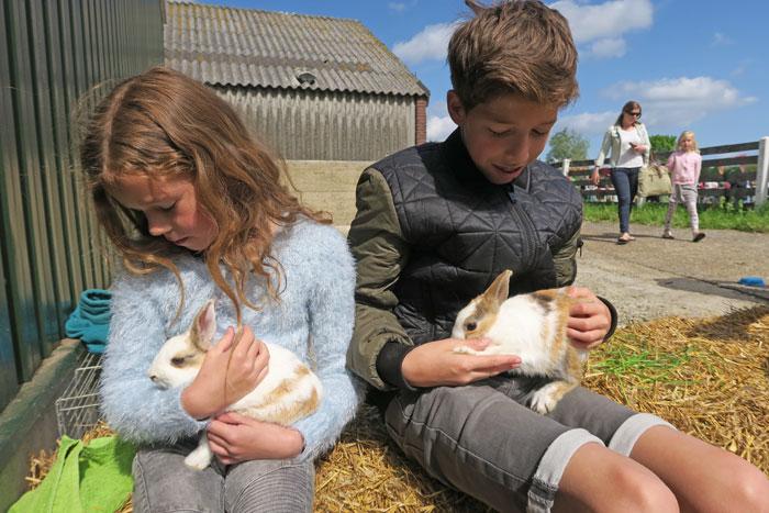 konijntjes knuffelen boerderijdagen
