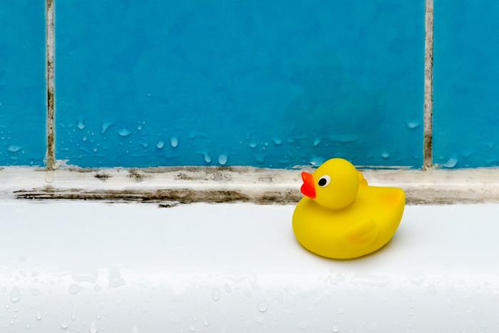 Badkamer Schimmel Verwijderen : Schimmel verwijderen in de badkamer: 5 tips om schimmel aan te pakken