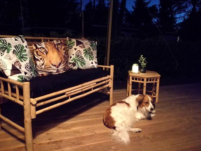 glamping nunspeet hondvriendelijk