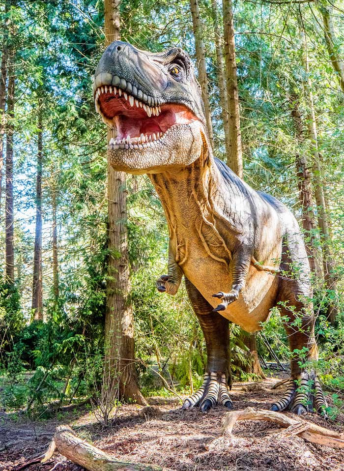Knuthenborg Safaripark  dinosaurussen bos op de Oost Deense eilanden