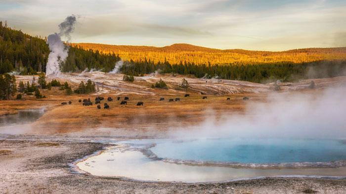 yellow stone national park, een van de mooiste plekken in Amerika