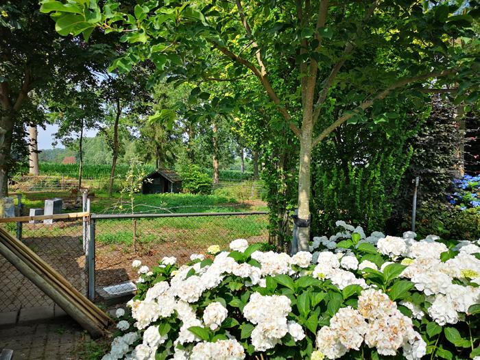 tuinhek voor een jardin sauvage