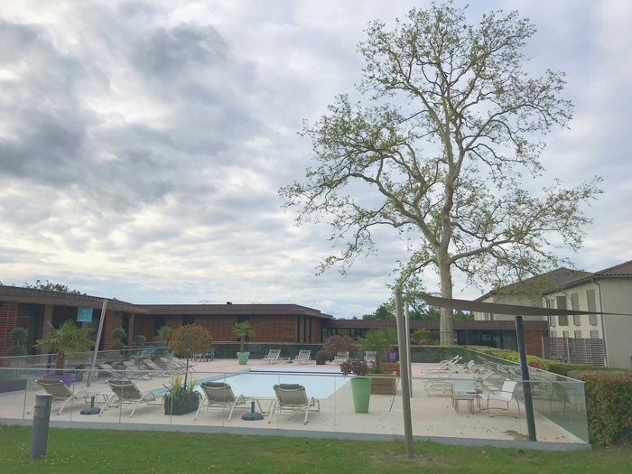 Hotel la Charpiniere zwembad