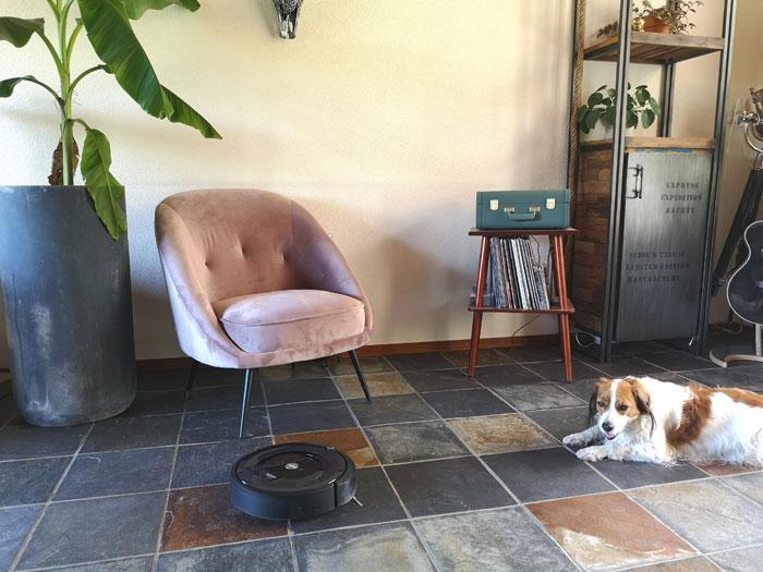 robotstofzuiger Roomba e5, de voordelen en nadelen met huisdieren