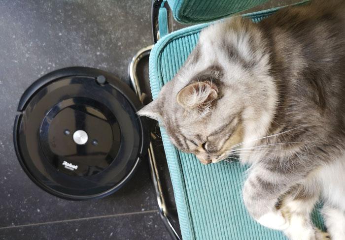 stofzuiger voor huisdieren, roomba e5 review robotstofzuiger