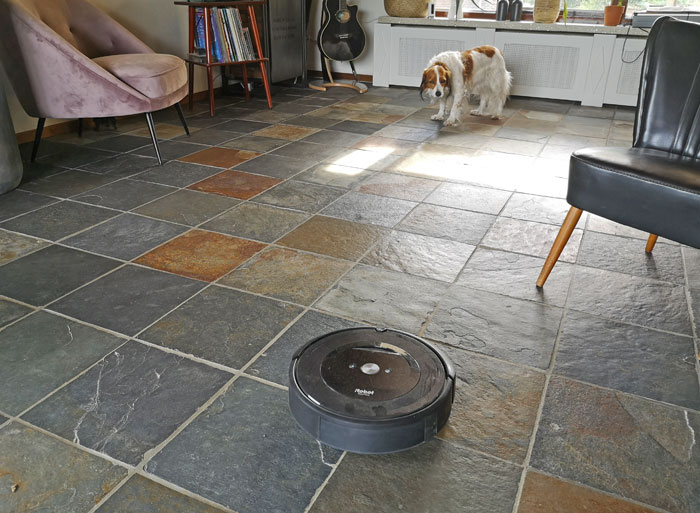 stofzuiger huisdieren Roomba