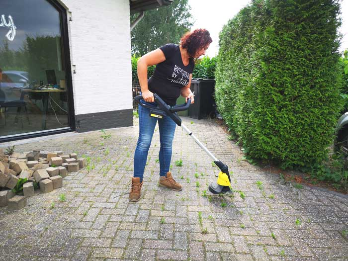 Kärcher weed remover review