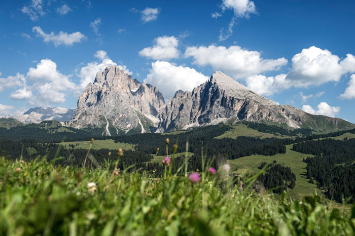 Sassolungo Mountain Zuid Tirol