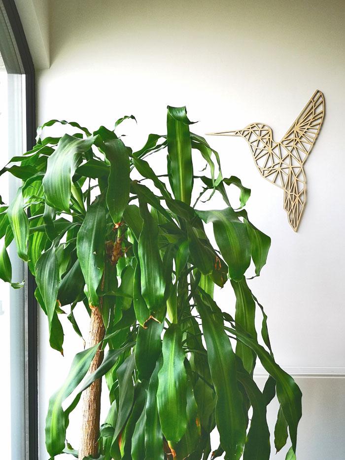 houten kolibrie wanddecoratie