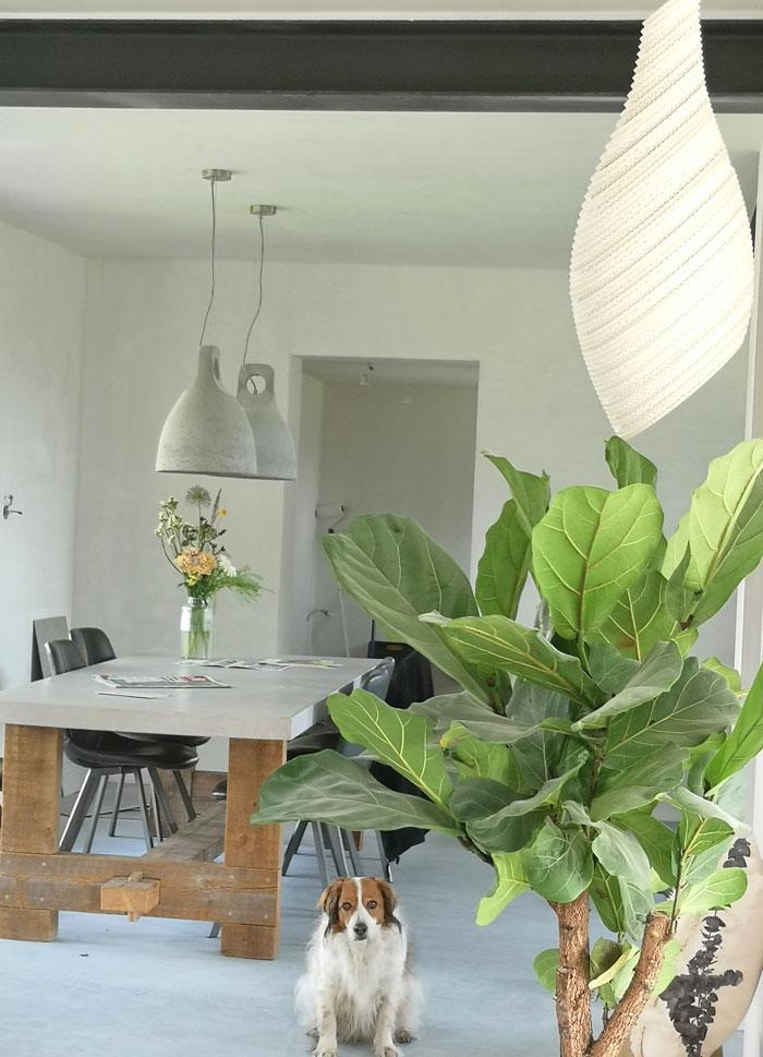 nest lamp van gerecycled karton in de vorm van een wespennest, merk Graypants, van Lampen24.nl