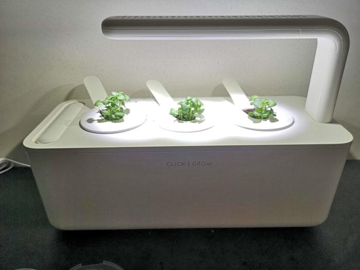 kruidentuin, click en grow